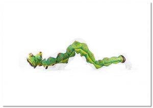 Caterpillar A2 Landscape Print