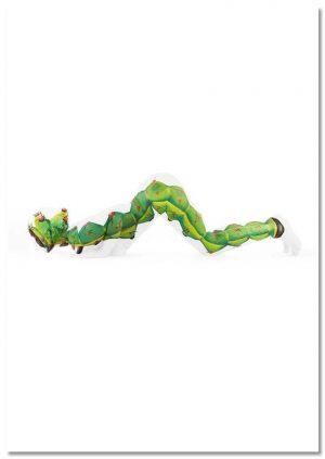 Yoga Caterpillar print