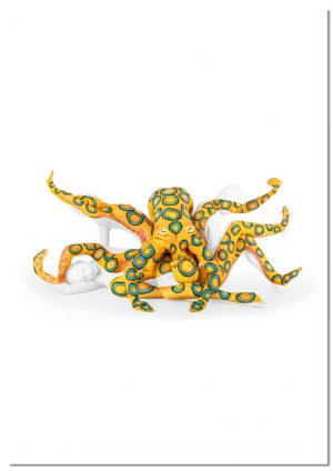 Marvels of Nature Octopus print