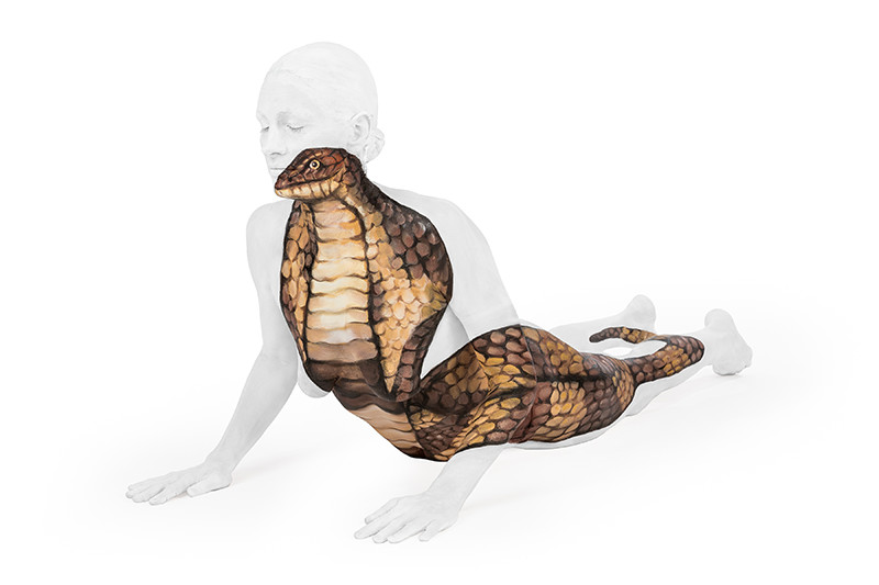 Cobra - Union of Yoga series